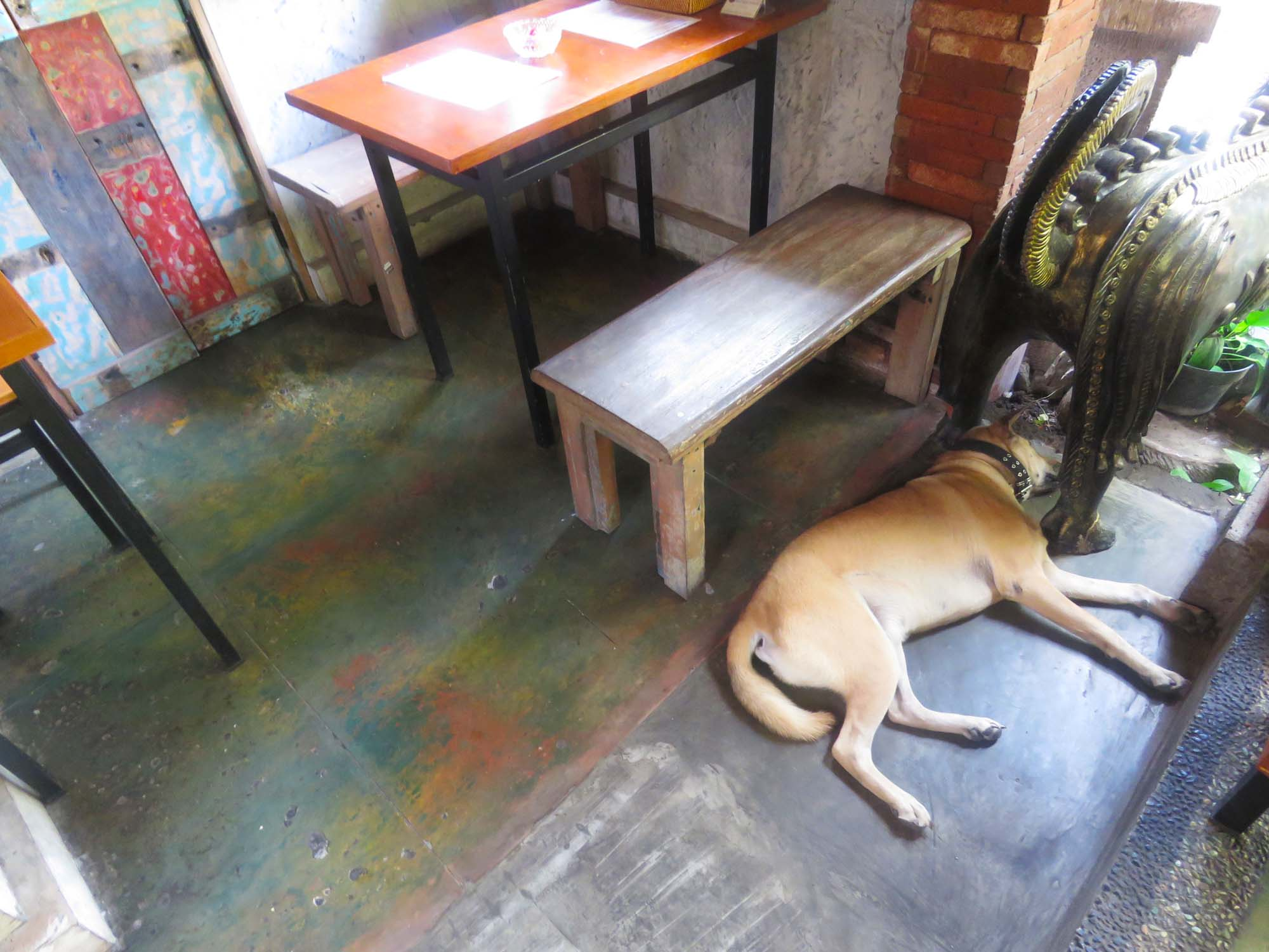 パパピザの番犬